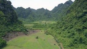 空中在岩石林业小山之间的行动绿色领域 股票视频