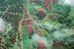 空中大森林海岛雨射击 库存图片