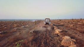 空中寄生虫拖拉机犁在坚果的领域,并且榛树树农场第二台拖拉机洒化肥 股票录像