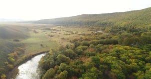 空中寄生虫英尺长度视图:在秋天山的飞行与日出柔光的森林 股票录像