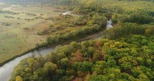 空中寄生虫英尺长度视图:在秋天山的飞行与日出柔光的森林 股票视频