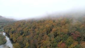 空中寄生虫-横跨在充满活力的颜色的小山慢慢地飞行与沿边的河在秋天在佛蒙特 影视素材