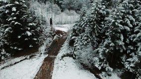 空中射击 有运行在森林附近的背包的一个人在山中间 花雪时间冬天 注意 影视素材