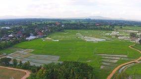 空中射击米领域和山景 影视素材