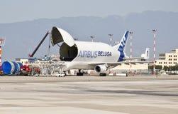 空中巴士A300-600ST白海豚 免版税库存照片