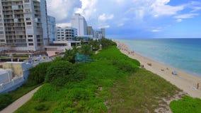 空中录影迈阿密海滩旅馆和棕榈树 股票录像