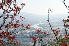 空中环境保护rishkesh城镇视图 免版税库存照片