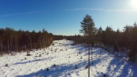 空中英尺长度 低空飞行 33c 1月横向俄国温度ural冬天 晴朗的日 冻森林 股票录像