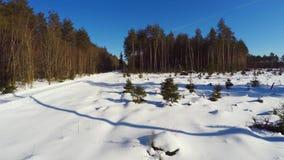 空中英尺长度 低空飞行 33c 1月横向俄国温度ural冬天 晴朗的日 冻森林 影视素材