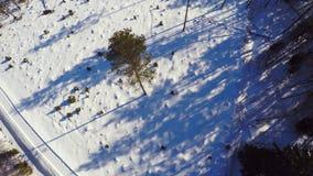 空中英尺长度 33c 1月横向俄国温度ural冬天 晴朗的日 冻森林 股票录像