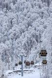 空中览绳在冬天森林背景美好的垂直的风景的客舱推力 库存图片