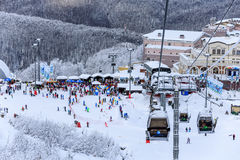 空中览绳滑雪电缆车和被逃脱的区域多雪的树背景美好的冬天风景的 库存照片