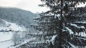 空中跨线桥结冰的多雪的云杉的森林 影视素材