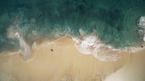 空中顶视图、海浪和白色沙滩 股票录像
