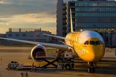 空中飞机在神西机场 图库摄影