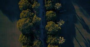 空中飞行,低空,在小山和马球领域在日落 影视素材