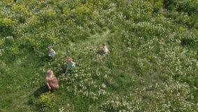 空中:有年轻白肤金发的嬉皮的母亲走和跑与她的女婴的质量时间在公园蒲公英领域 股票录像