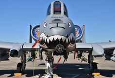 空军队A-10 Warthog/雷电II 库存图片