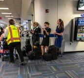空服员检查电子邮件在机场 免版税图库摄影
