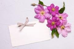 空标识符和紫罗兰色夏天铁线莲属在灰色织地不很细b开花 免版税图库摄影