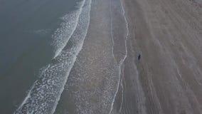 空气录影夺取从与寄生虫的上面的有一个大海滩的海视图和跑的人早晨 影视素材
