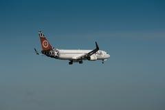 空气斐济波音737-800 库存图片