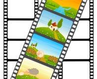 空白五颜六色的影片绵羊主街上 免版税库存照片