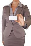 空白企业女实业家看板卡藏品 图库摄影