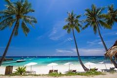 空白伞和椅子在椰子树下 免版税库存照片