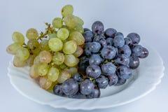 空白和黑色葡萄 免版税库存图片
