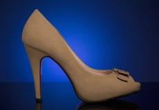 空白女性鞋子 库存图片