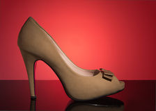 空白女性鞋子 库存照片