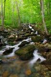 空白小河小瀑布,坎伯兰峡国家公园 免版税库存照片