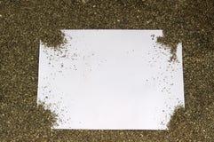 空白明信片 图库摄影