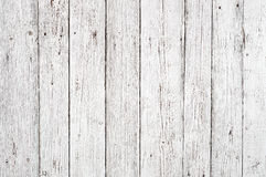 空白木纹理背景 库存图片