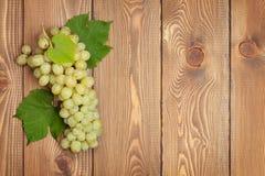 空白束的葡萄 库存照片
