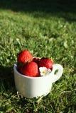 空白杯子的草莓 免版税图库摄影