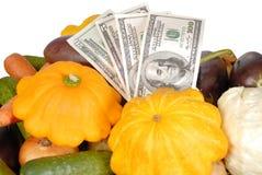 空白查出的货币的蔬菜 库存照片