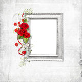 空白框架红色的玫瑰 库存图片