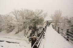 空白桥梁 免版税库存图片