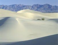 空白沙丘, Death Valley国家公园,加州 免版税图库摄影