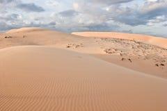 空白沙丘 免版税库存图片