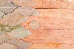 空白海湾新鲜的草本查出的叶子 库存图片