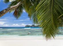 空白珊瑚海滩沙子和天蓝色印度洋。 图库摄影