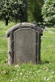 空白的严重石头在坟园 免版税图库摄影