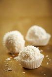 空白的块菌状巧克力 免版税库存照片