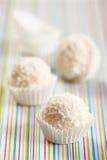 空白的块菌状巧克力 免版税库存图片