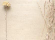 空白的工艺背景 粗砺的纸板料与干燥花的 为信件文字,创造性的工作概念嘲笑  库存图片