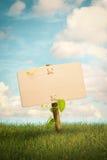 空白的木标志和自然本底 免版税库存图片