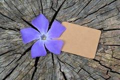 空白的标记和蓝色花 免版税图库摄影
